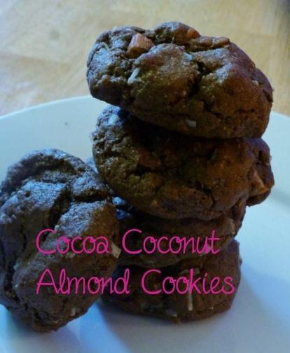 Cocoa Coconut Almond Cookies